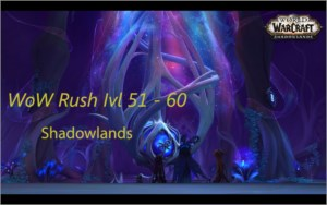 Rush lvl WoW Shadowlands  - 51 ao 60