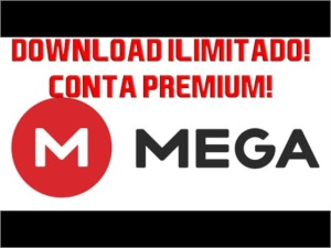Conta Mega premium 4 meses(download ilimitado)