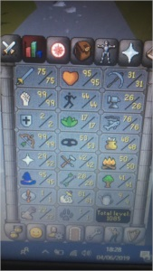 vendo maxed runescape pure !