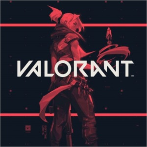 Valorant TriggerBot indetectavel