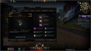 Conta GWF com Paladino de brinde Mid/Late Game Neverwinter