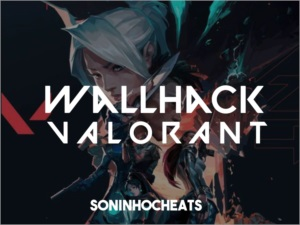 Hack WallHack VALORANT